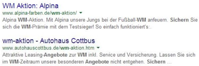 WM Aktion in Meta Description